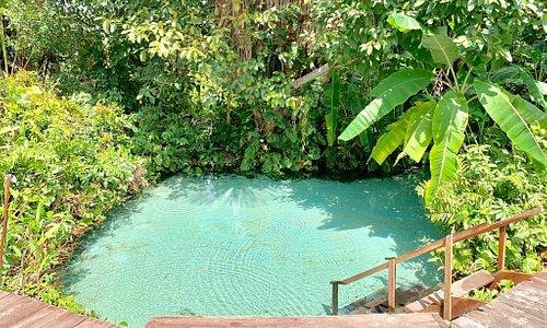 Somos uma agência registrada e especializada em Expedições ao Parque Estadual de Jalapão - TO e Chapada das Mesas - MA. Oferecemos os seguintes serviços: Esportes Radicais de Aventura, Ecoturismo em veículos 4x4, Safari e Turismo Cultural.
