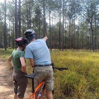 Bike through Kirirom National Park