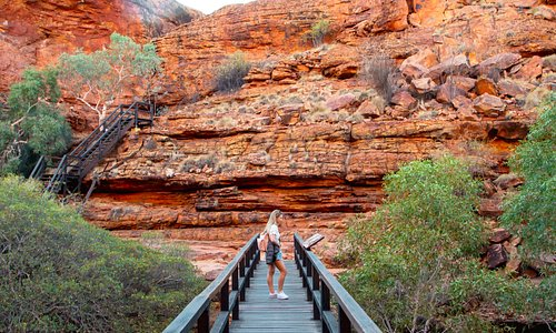 The Kings Canyon Rim Walk takes you across the Canyon through rocky paths, alongside the rim of the Canyon and down through the gorges. It takes approximately 3-4 hours and we recommend starting early to watch the sun rise over the Canyon wall and also to avoid the heat.