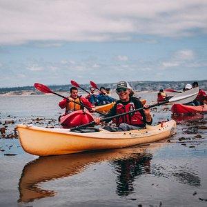 Kayak the Monterey Bay