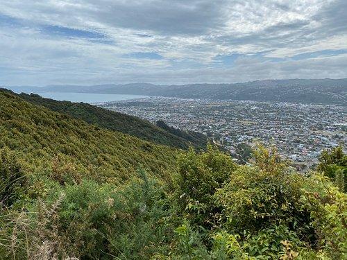 View from Te Whiti Riser Summit