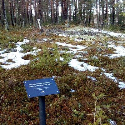 Pohjanmaan kevät etenee jo kovaa vauhtia helmikuun 17. päivänä 2020 ja kalmiston kangas alkaa olla lumesta vapaa.