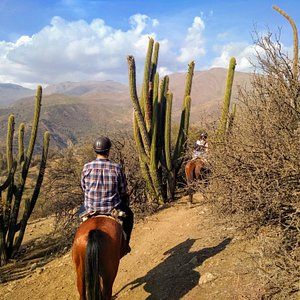 Horseback ride in the Andes right outside Santiago!