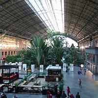 阿托查火車站內的熱帶花園景觀