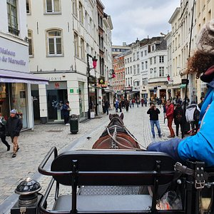 Brussels historic city centre / Grand Place by horse'n'cart