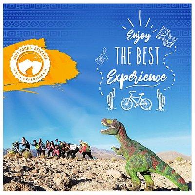 las mejores experiencias en bicicleta por el desierto de Atacama