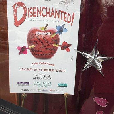 Disenchanted Flyer