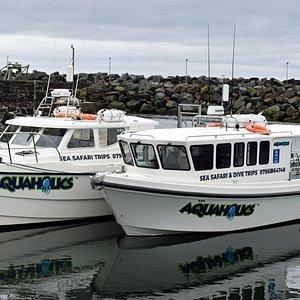 Aquaholics 2 new fast modern hardboats, inside and outside seating , toilet, heating