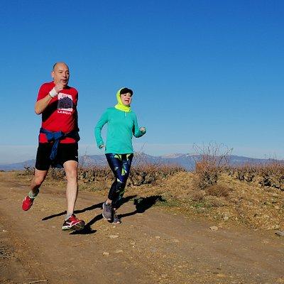 Group trail run through vineyards on Monte Cantabria, Logroño.