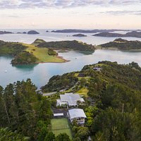 Tarapunga & Weka- A bird's eye sea view