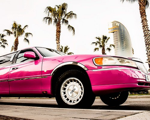 Exterior Ford Lincoln Rosa