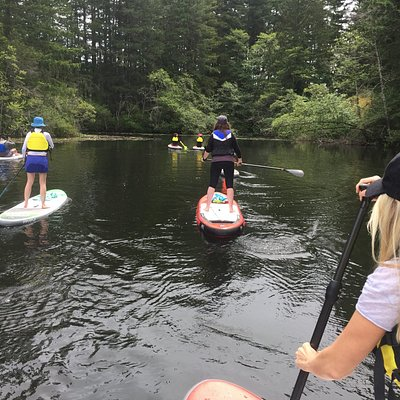 paddling Thetis Lake Victoria - Victoria SUP Co.d