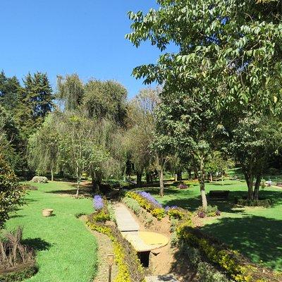 Arboretum Tree Garden
