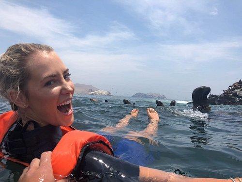 Swim with sea lions in Lima PERU