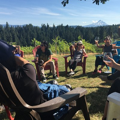MountNbarreL Group Vineyard Tour