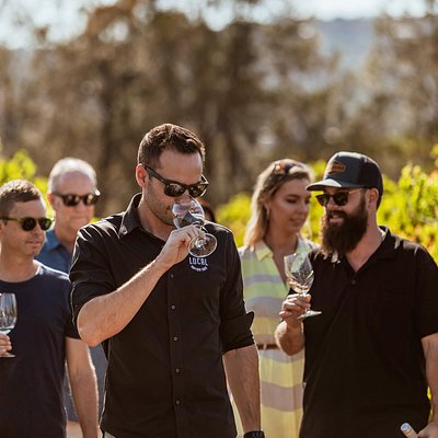 Premium wine tours in the Swan Valley, Perth Hills, Bickley Valley and Margaret River wine regions with Up Close and Local Tours