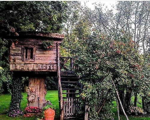 Raccoquesta meravigliosa casa sull'albero è un autentico chalet d'epoca del 800 in rovere  massiccio  collocata su un tronco millenario di cedro   ,ogni info la potete chiedere a :antichità maurizio salici
