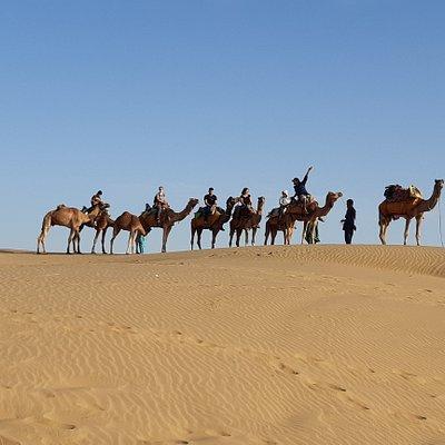 Ready for camel safari