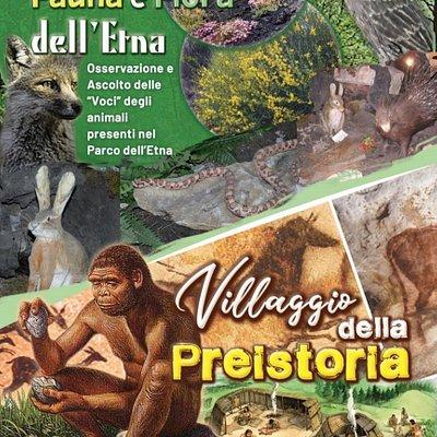 All'interno del parco giurassico potrai vositare il villaggio della preistoria e il museo della fauna e flora