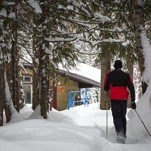 Elk Valley Nordic Centre in Fernie, BC