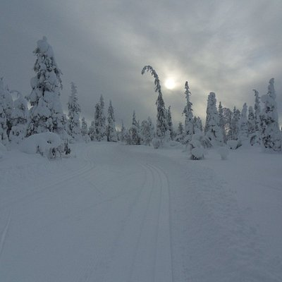 Cross-country skiing tracks are maintained very well