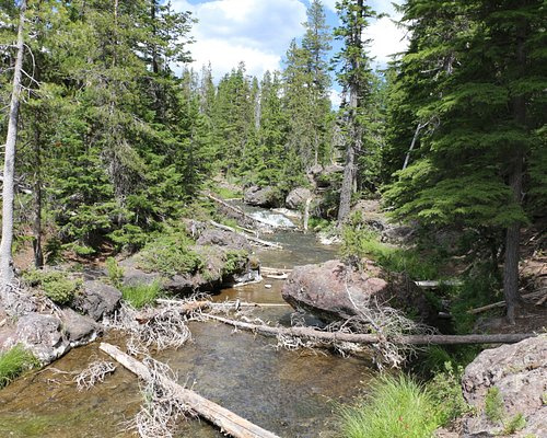 Paulina Creek above the falls