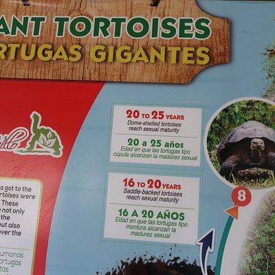 Part of the walled Information Board at Rancho Manzanillo, Santa Cruz Island, Galapagos