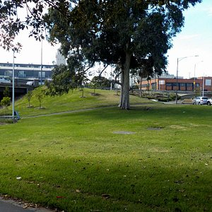 open lawns leading to Dynon Road