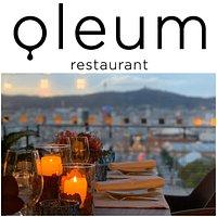 Logo Oleum