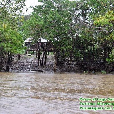 Casitas a la orilla del Lago Sanango, cerca de Yurimaguas