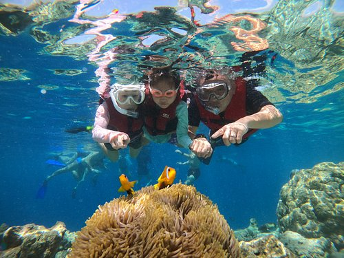 Nemo point