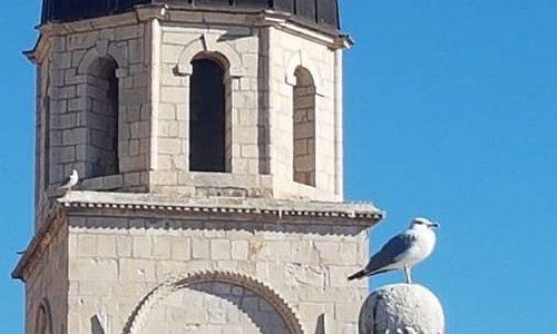 Dubrovnik Panorama/Walking Tour