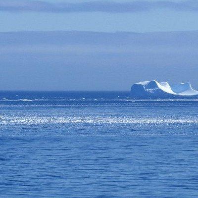 Glacier flottant dans le canal de Canal de Schollaert, Antarctique.