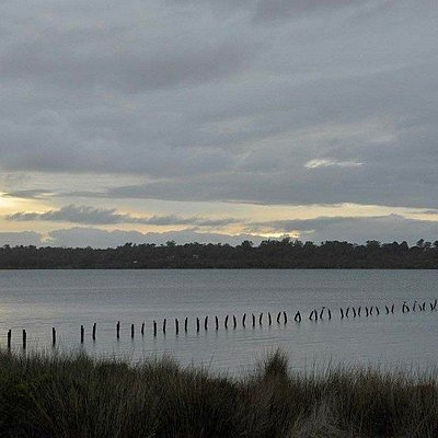 View of Leschenault Estuary from near the Harris Track walk