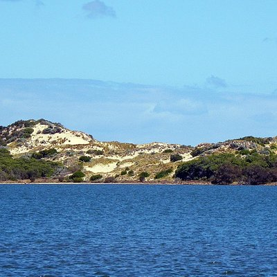 View of the Leschenault Peninsula sand dunes across the estuary