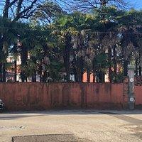 Vista del Parco da Via Damiani ....