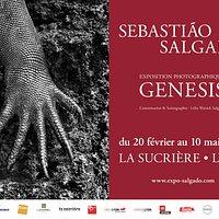 À partir du 20 février 2020, venez découvrir à La Sucrière l'exposition exceptionnelle GENESIS de Sebastião Salgado ! 245 photographies en noir et blanc, pour un incroyable hommage à notre planète !