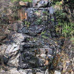 Peak Circle Walk - Lugard Falls
