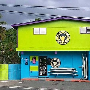 Hang Loose Surf Shop & Werner Vega Surfboards  Since 1987 providing your surfing and beach needs....