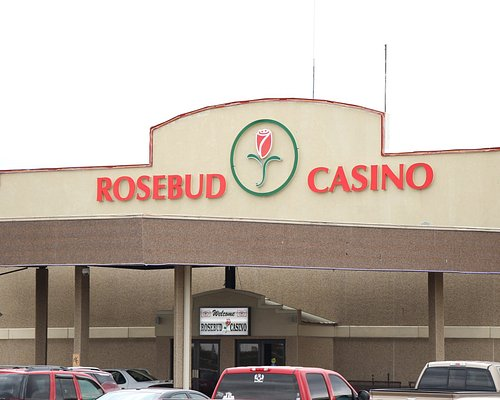 Welcome to the Rosebud Casino, where the fun never stops!