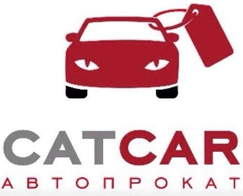 catcar.com.ua Аренда авто на все случаи жизни!