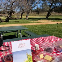 Picnic at Terra D'Oro