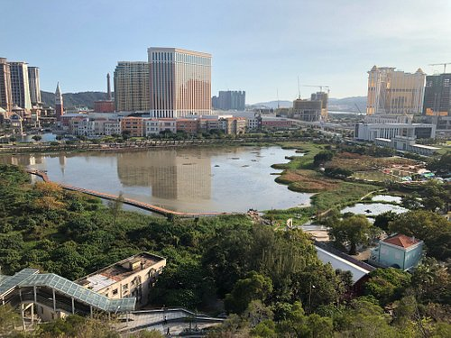 Views of the Wetlands and Cotai Strip