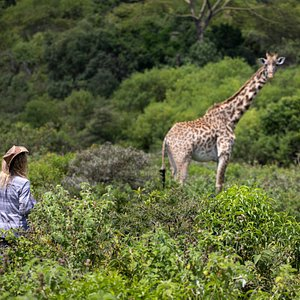 Nature Walk in Arusha National Park