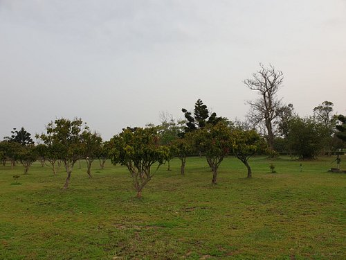 金門縣農業試驗所