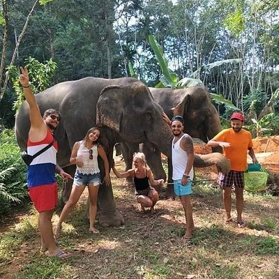 Feed your elephant then take a stroll through the beautiful Thai countryside.(srakaew cave elephant sanctuary)