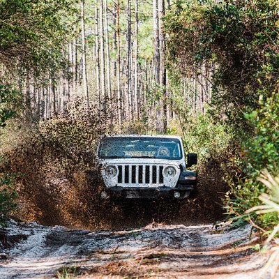 Adventure in The Forest Tour 4x4 Off-Road