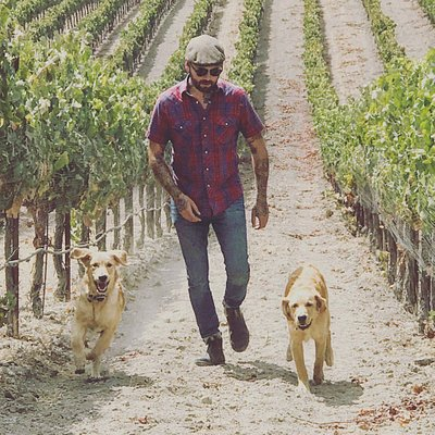 Winemaker Orion Stang walking the vineyards with his pup Abel.