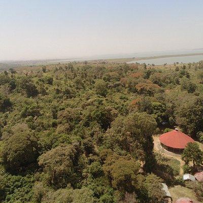 Korata, Church Forest, and Lake Tana. Amazing.