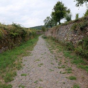 こんな石畳道が丘の上に向けて続きます。